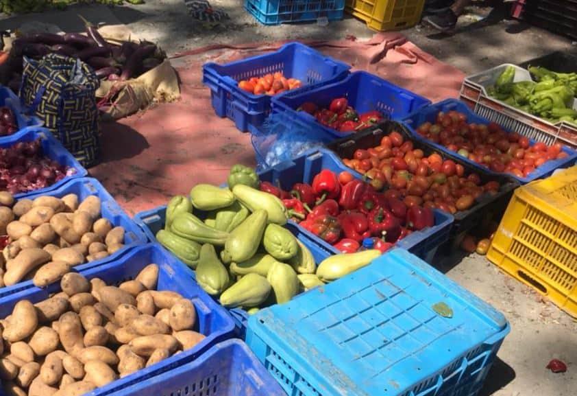 local fruit market puerto plata